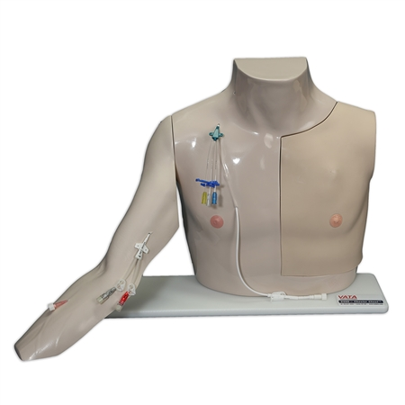 Chester Chest Vascular Access Simulator with Standard Arm Lightly Pigmented