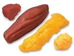 Life/form 1Lb & 5Lb Fat Replicas and 1Lb & 5Lb Muscle Replicas