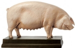 "SOMSO Model of Breeding Pig ""Ingrid"""