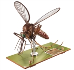 SOMSO Model of a Mosquito