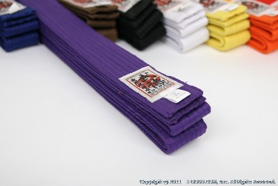 Martial Arts Obi Purple
