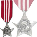 The Ignoble Gallantry Award