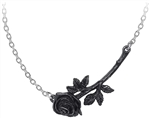 Alchemy Black Rose Enigma Pendant