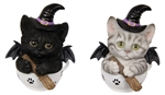 Witch Cat Angels pair
