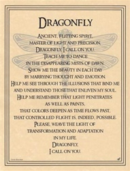 Dragonfly parchment poster
