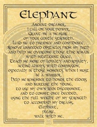 Elephant Prayer parchment poster