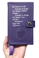 Pocket-Sized Big Book and 12 N 12 Book Cover