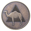 Camel on Triangle Bronze Medallion