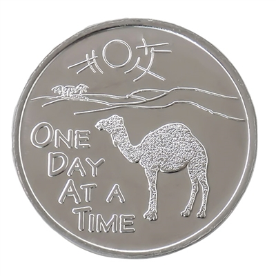 One Day at a Time AA Camel Coin