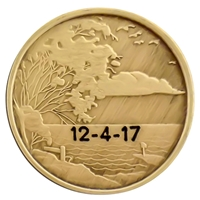 Engraved AA Coin - Serenity Scene-Style 2 - Peace within the storm quote on the back