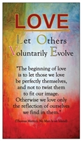 "LOVE - ""Let Others Voluntarily Evolve"" Magnet on an abstract background"