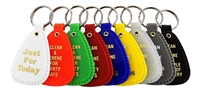 NA Anniversary Key Tags - Full Set - 9 Key Tags of Various Colors and Significance ranging from 24-hours to multiple years