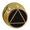 "3/8"" Diameter Gold Plated AA Logo on Black Lapel Pin"