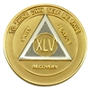 Alcoholics Anonymous or AA Coin - Gold & Silver Bi-Plate Medallion - the one year front and back of the coin are featured in this image