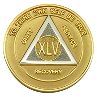Alcoholics Anonymous | Gold & Silver Bi-Plate Anniversary Medallion | $10.00 | Features: the circle-triangle AA logo with the Roman numeral in the center.