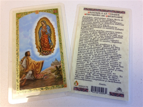 HOLY PRAYER CARDS FOR OUR LADY OF GUADALUPE WITH SAN JUAN DIEGO PRINTED IN  SPANISH WITH FREE U S  SHIPPING!
