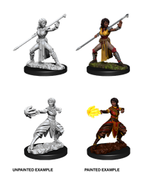 Dungeons & Dragons Nolzur's Marvelous Miniatures: Female Half-Elf Monk