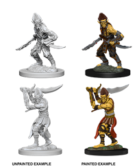 Dungeons & Dragons Nolzur's Marvelous Miniatures: Githyanki
