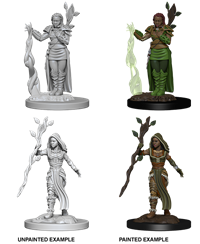 Dungeons & Dragons Nolzur's Marvelous Miniatures: Female Human Druid