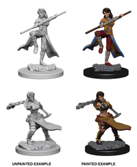 Dungeons & Dragons Nolzur's Marvelous Miniatures: Female Human Monk