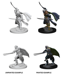 Dungeons & Dragons Nolzur's Marvelous Miniatures: Male Elf Ranger