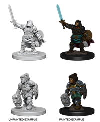 Dungeons & Dragons Nolzur's Marvelous Miniatures: Female Dwarf Paladin