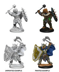 Dungeons & Dragons Nolzur's Marvelous Miniatures: Male Dragonborn Paladin