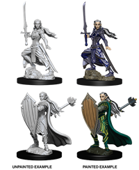 Dungeons & Dragons Nolzur's Marvelous Miniatures: Female Elf Paladin