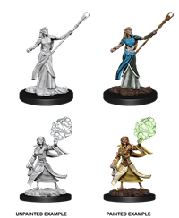 D&D Nolzur's Marvelous Miniatures: Elf Sorcerer