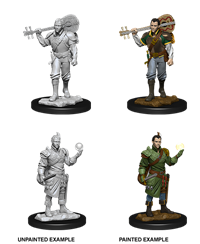 D&D Nolzur's Marvelous Miniatures: Half-Elf Bard Male