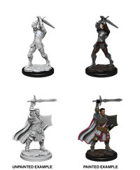 D&D Nolzur's Marvelous Miniatures: Human Paladin Male