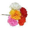 Carnation Pick Assorted. 0406250