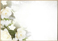Large Sympathy Card Mixed White Flowers. 1560074