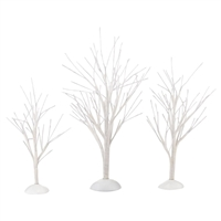 White Bare Branch Trees