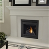 Napoleon B30 Direct Vent Gas Fireplace Ascent Series
