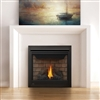 Napoleon B35 Direct Vent Gas Fireplace Ascent Series