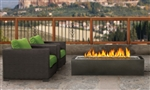 Napoleon Outdoor Linear Gas Patioflame GPFL48