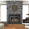 Gas Fireplace Inserts by Napoleon Model XIR4