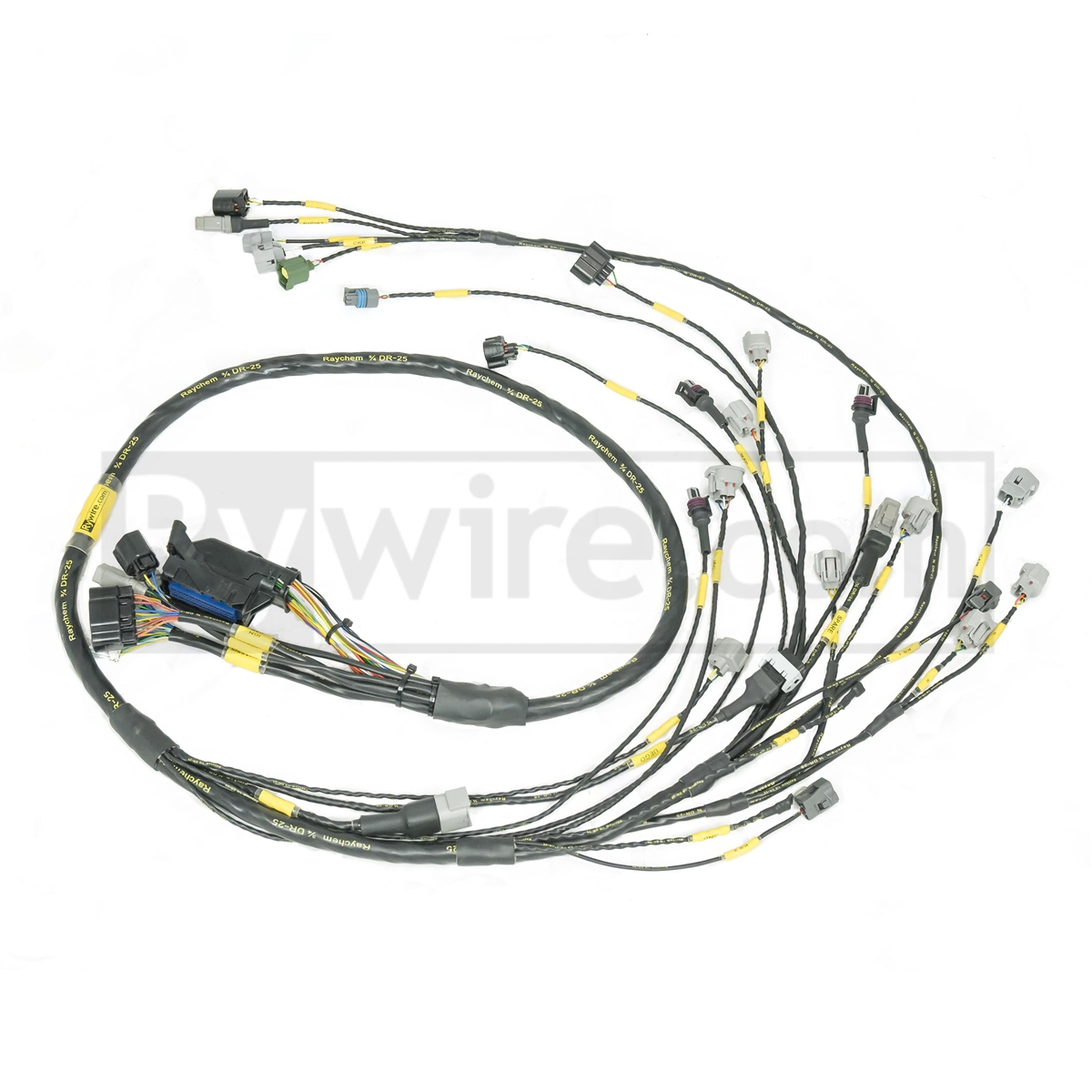 Wondrous 2Jz Wiring Harness Wiring Diagram Wiring Digital Resources Operpmognl