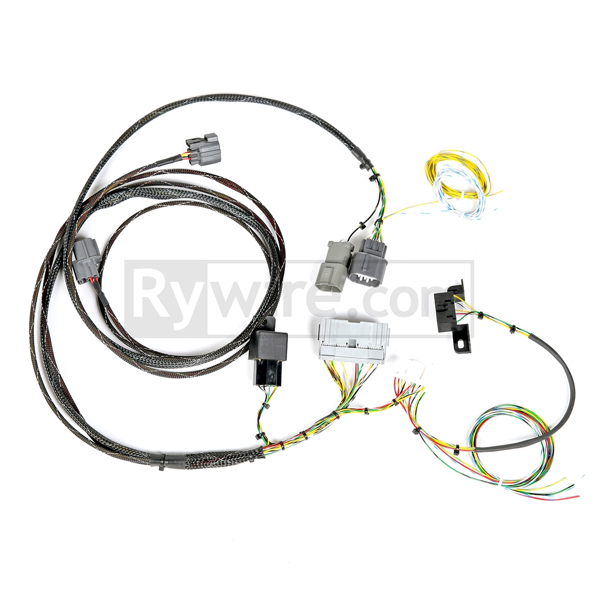rywire k series chassis adapter K20 Wiring Harness wiring, engine loom, 6mt – jdm of miami
