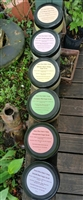 Sugar Scrubs (8oz)