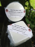 Eucalyptus Mint Mini Soap Bars