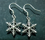 Stainless Steel Snow Flake Earrings(S218E)