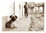 Fine Art Giclee Print - 'Little Dog' - Trinidad, Cuba
