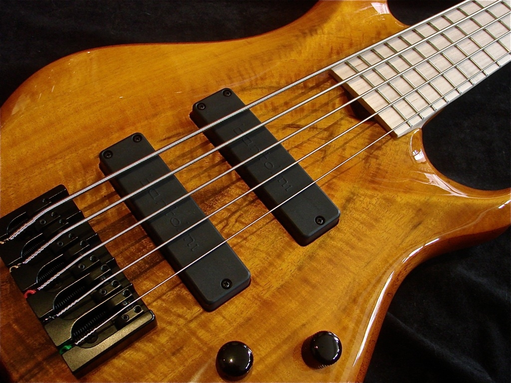 Roscoe SKB 3005 Flame Maple 5 String SOLD