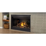 Napoleon Ascent 46 DV Gas Fireplace