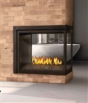 "Napoleon Ascentâ""¢ Multi-View Direct Vent Fireplace"