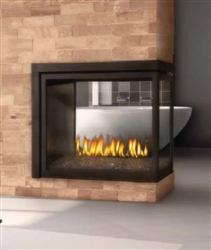 Napoleon Ascent Multi-View Direct Vent Fireplace