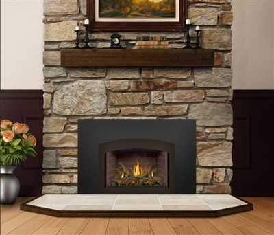 Napoleon X3 Oakville Series Wood Burning Fireplace Insert