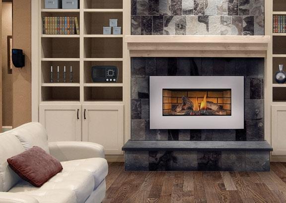 Napoleon Roxbury Series Gi3600 Natural Vent Gas Fireplace Insert